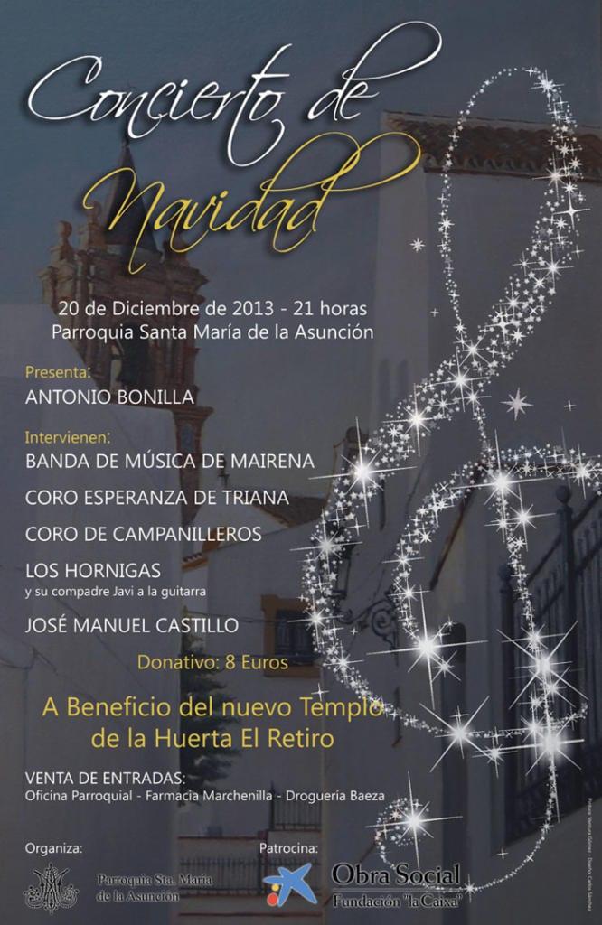 Conciertonavideño2013