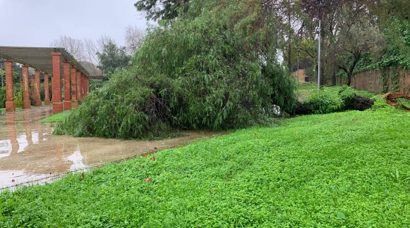 Parques y cementerio municipal permanecerían cerrado hoy jueves a causa del temporal