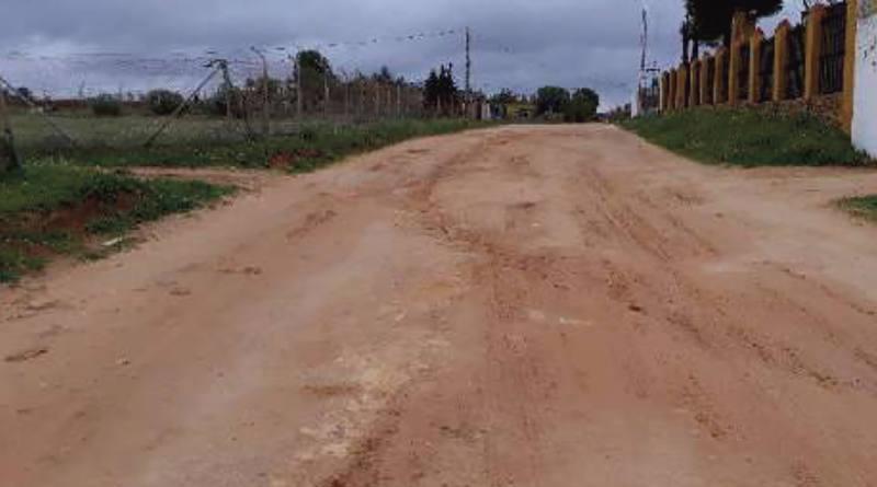 El Ayuntamiento de Mairena recibe subvención que permitirá mejorar el estado de conservación del camino de Gandul